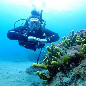 PADI Open Water Course Lanzarote | PADI Course lanzarote