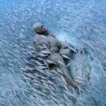 Museo Atlantico Lanzarote | Underwater museum Lanzarote