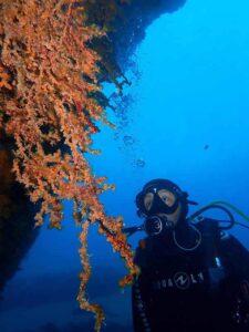 Lanzarote Diving - Manta Diving Lanzarote
