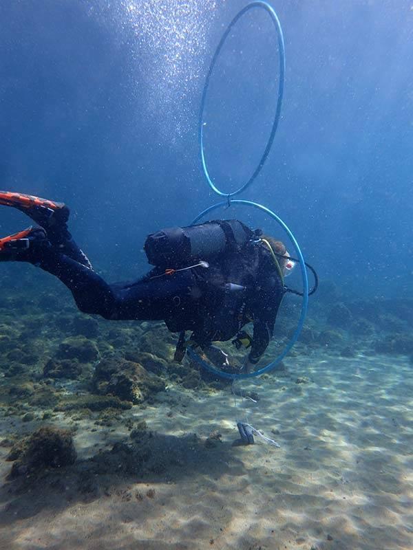 Master Scuba Diver: PADI Peak Performance Buoyancy course with Manta Diving Lanzarote | Scuba diving in Lanzarote