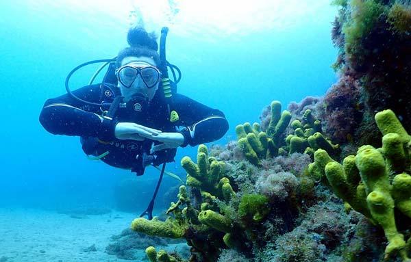 PADI Open Water Puerto Del Carmen | Learn to Dive Lanzarote