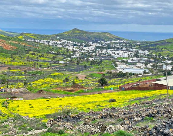Become a digital nomad in Lanzarote and experience the beauty of the island
