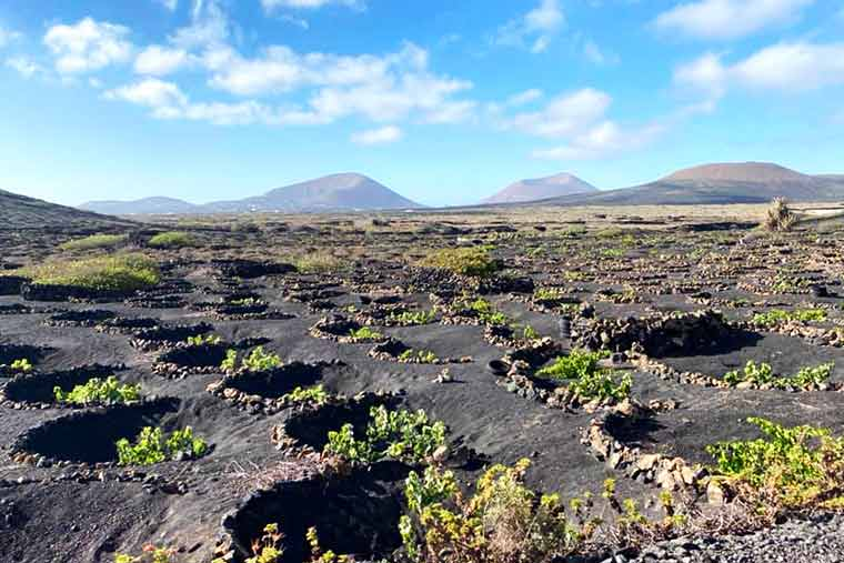 Visit Lanzarote to see the lunar volcanic landscapes