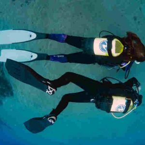 PADI Nitrox Speciality Course - Theory Only