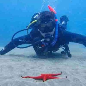 Diving for the first time in Lanzarote