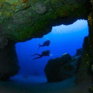 Contact us to book your dive in Lanzarote - Manta Diving Lanzarote
